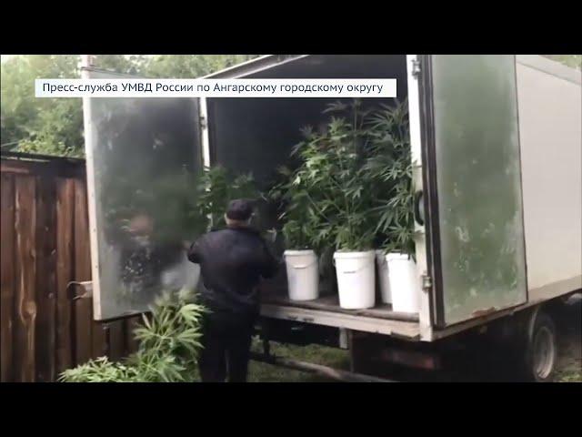Ангарчан будут судить за сбыт наркотиков