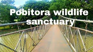 preview picture of video 'Pobitora wildlife sanctuary  লৈ বলক যাওঁ'