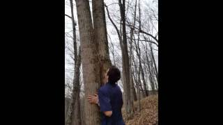 Why just hug a tree if your lost