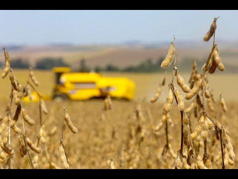 Agricultura, Pecuária, Abastecimento e Des. Rural -  Créditos de Descarbonização  - 14/10/2021