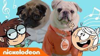 Endo Music's ending theme for Nickelodeon's Pug House series.