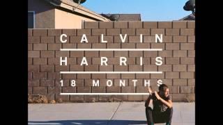 Calvin Harris ft Tine Tempah- Drinking From The Bottle