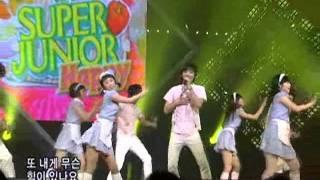 Superjuiorhappy - Cook-King @SBS Inkigayo 인기가요 20080713