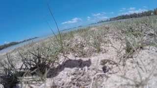 preview picture of video 'DJI Phantom 2 with a GoPro filming at Anse La Raie, Mauritius!'