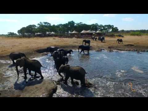 Somalisa Acacia, Hwange National Park, Zimbabwe