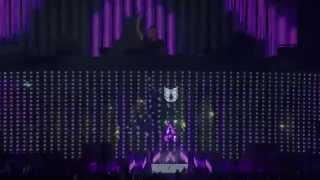 Bassjackers - Live @ Electric Daisy Carnival 2014