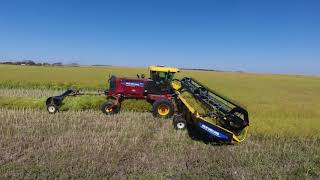 Demo of New Holland SR200 Windrower with DuraSwath 440HB Header. Wass Farms, McLean, Saskatchewan.