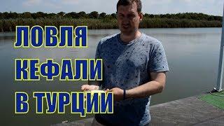 Рыбалка на реке алара турция