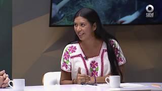 México Vive - Integración de la biodiversidad