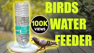 How to make automatic birds water feeder home DIY