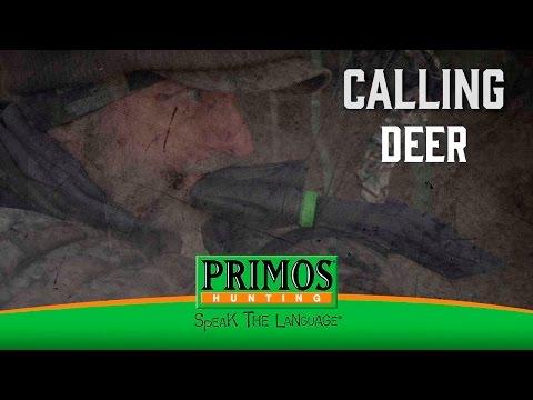 How to Call Deer video thumbnail