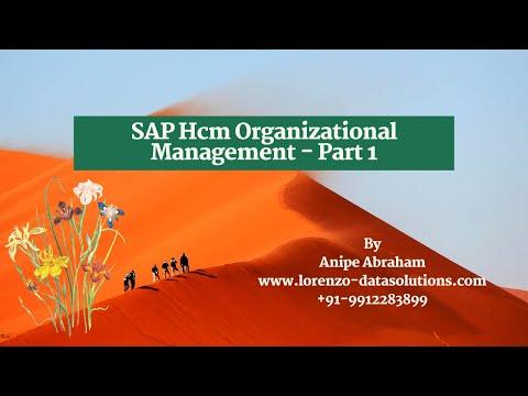 2.Sap Hcm Online Training. #SAP #HR #HCM - YouTube