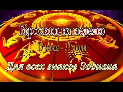 24 ноября какой знак зодиака по гороскопу совместимость с другими знаками