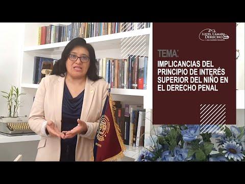 INTERÉS SUPERIOR DEL NIÑO EN DERECHO PENAL - Luces Cámara Derecho 183