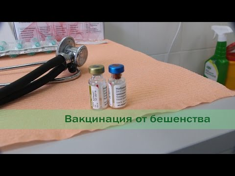 Общий анализ крови о состоянии печени