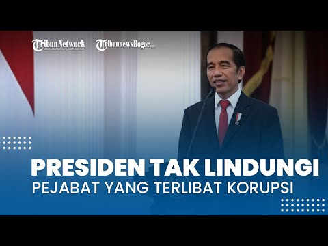 Tag: Jokowi - Dua Menteri Kabinet Indonesia Maju Jadi Tersangka Korupsi,  Jokowi: Saya Tak Lindungi yang Korupsi - Tribunnews.com Mobile