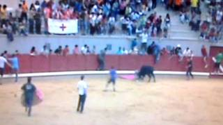 preview picture of video 'Cogida toros en encierros de Almodóvar del Campo. Año 2010  01.   Funny bulls'