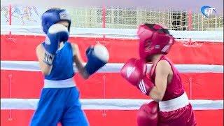Представители районов области и соседних регионов съехались в Великий Новгород на турнир по боксу