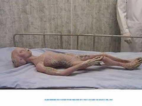 Deelishis nude shower photos opinion you