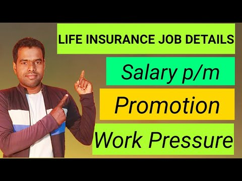 mp4 Insurance Agent Manager Salary, download Insurance Agent Manager Salary video klip Insurance Agent Manager Salary