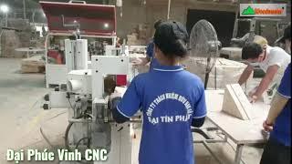 Máy chà nhám cạnh tự động 2 trục nhám | Woodmaster