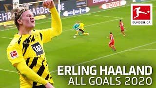 Erling Haaland – All Goals 2020