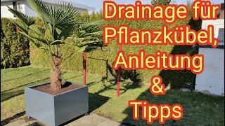 Drainage für Pflanzkübel legen, Palme im Garten/Balkon/Terrasse  - DIY-Anleitung: so mach ich es