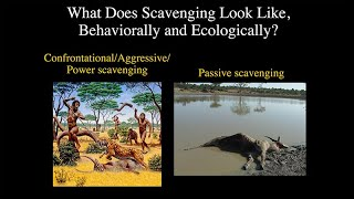 CARTA: The Role of Hunting in Anthropogeny: Briana Pobiner - The Ecology of Hominin Scavenging