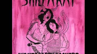 """Shilpa Ray & Her Happy Hookers- """"Heaven in Stereo"""""""
