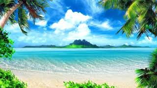 🎼 The Beach🌴 (Voices) Movie Soundtrack Music 🎼