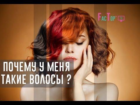 ЦВЕТ ВОЛОС, От чего зависит цвет волос ?
