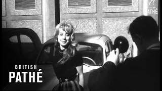 Brigitte Bardots By The Dozen (1961)