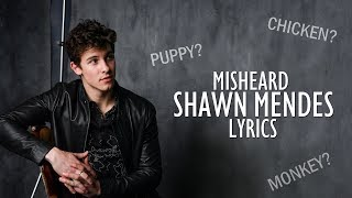 Funniest Misheard Shawn Mendes Lyrics