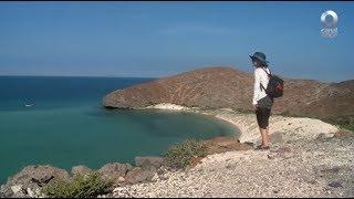 Detrás de un click - Isla Coronado: Baja California Sur