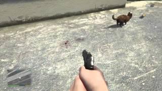 GTA5 CAT KILL ...