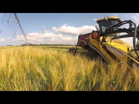 Silage 2012 - Dairy Farming In Canada