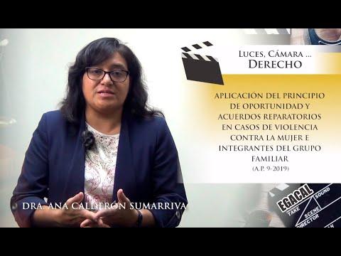 APLICACIÓN DEL PRINCIPIO DE OPORTUNIDAD Y ACUERDOS REPARATORIOS  - Luces Cámara Derecho 154