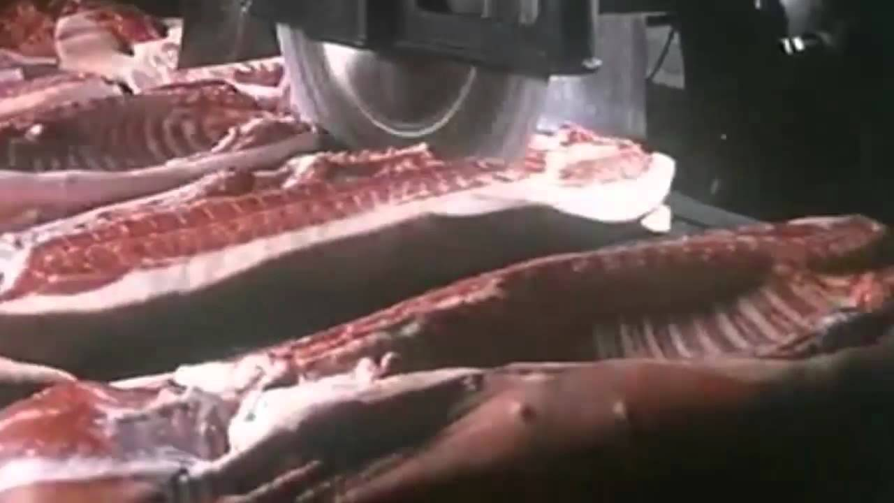 Meat, Machines, Music, More Meat