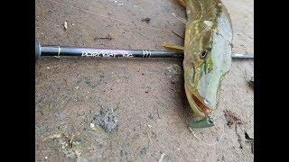 Crazy fish perfect jig 86-l-t
