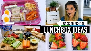 BACK TO SCHOOL LUNCHBOX IDEAS   COLLAB WITH RACHELLEEA