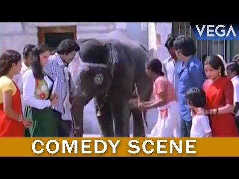 Thambikku Entha Ooru Tamil Movie || Madhavi Gets Insulted By Elephant || Comedy Scene