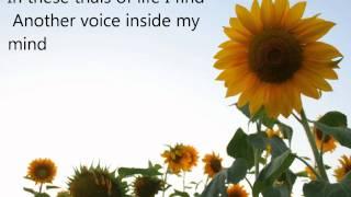 Alison Krauss Video