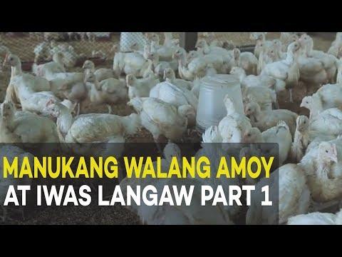 Halamang-singaw sa diskarteng kuko paggamot