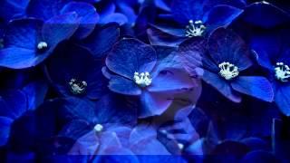 Nanci Griffith - Bluer Than Blue