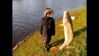 Рыбалка в пензенской области кузнецкого района
