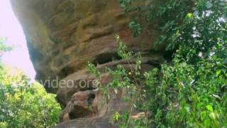 Bhimbetka Rock Shelter 15