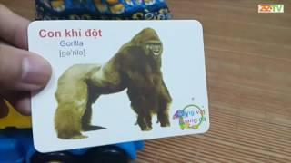 Trò chơi thẻ tranh phần 1 (Động vật hoang dã) - Flashcard game (wild animals)