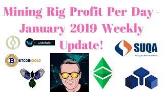 Mining Rig Profit Per Day - January 2019 Weekly Update - Zelcash Masternode
