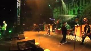 Dropkick Murphys - The Irish Rover (Live at Fenway Park