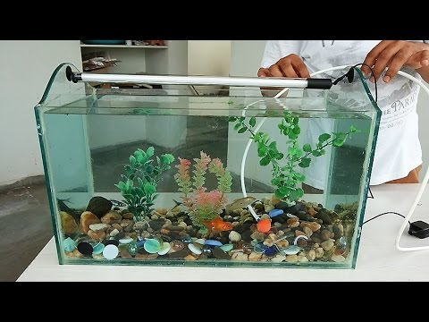 How to Make an Aquarium at Home – Do it Yourself (DIY)